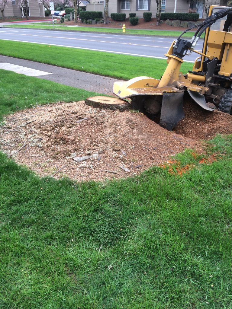 stump grinding company okc